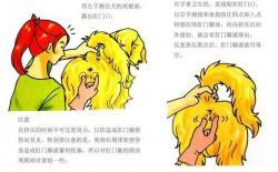 怎么给狗狗挤肛门腺?挤肛门腺的好处+原因+时间+注意点