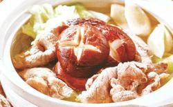 主人与狗狗共享餐:清炖羊肉炉