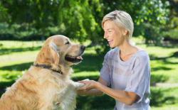 狗狗的正面教育法(二):是非分明