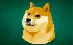 柴犬——中产的标志,有钱人的象征?