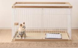 柴犬的围栏什么时候可以去掉?