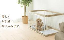 怎么防止柴犬狗狗越过围栏啃咬墙壁?
