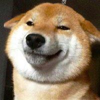 柴犬搞笑头像