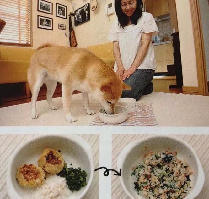 柴犬自制狗粮2.jpg