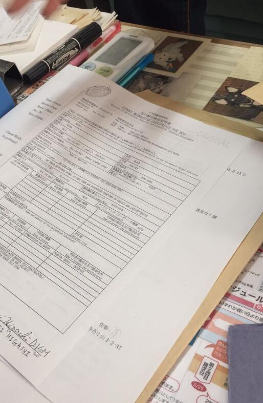 柴犬从日本入境中国的检疫证明